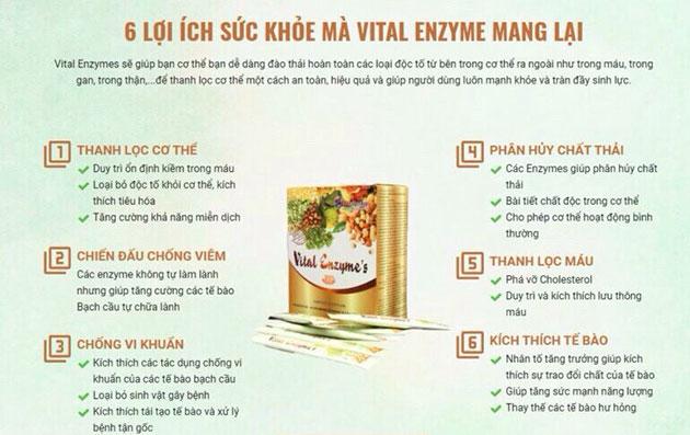Công dụng Ưu việt của Vital Enzymes