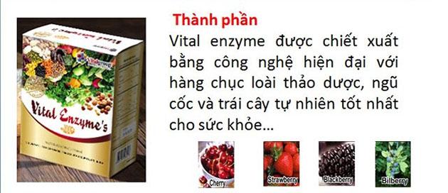 thành phần trong sản phẩm Vital enzymes